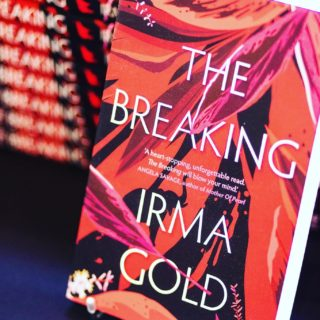 ❤️GIVEAWAY❤️  If you haven't got your copy of The Breaking yet, or you'd like one for a friend, sign up to my monthly newsletter full of bookishly good stuff for readers, writers and editors to go in the draw to win. Sign-up box here: irmagold.com/blog  GOOD LUCK, chicks!  #TheBreaking #writinglife #writerslife #authorlife #authorslife #authorsofinstagram #writersofinstagram #elephants #elephantlove #elephantlover #thailand #travel #travelling #wanderlust #giveaway #bookgiveaway #bookgiveawayaustralia @midnightsunpublishing   Photo courtesy of The Street